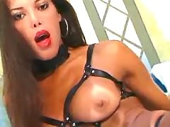 Shemale in straps plays with cock